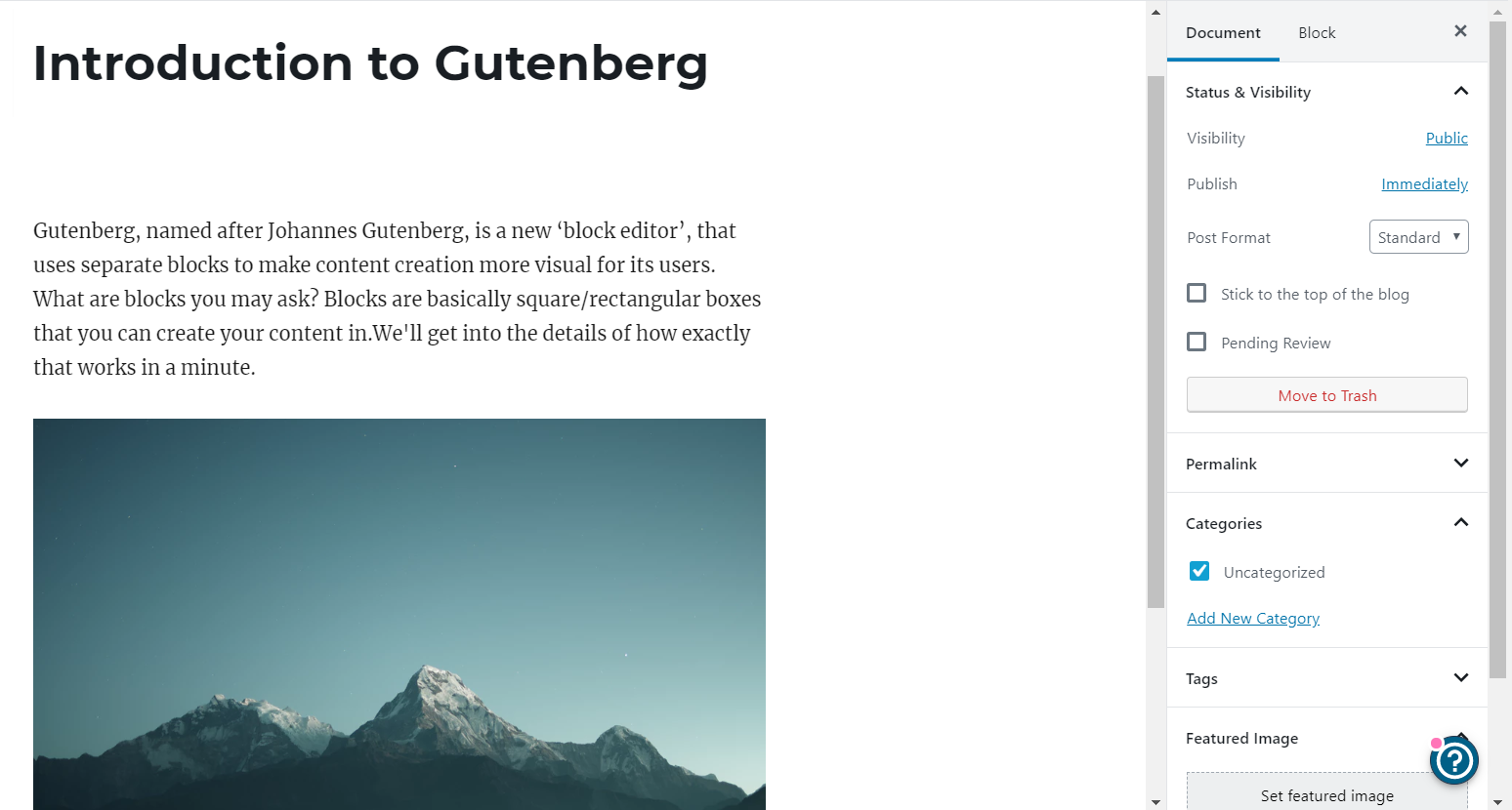 Preview of adding category to WordPress's new editor