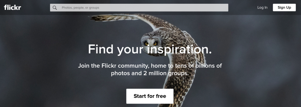Flickr: Free image hosting website