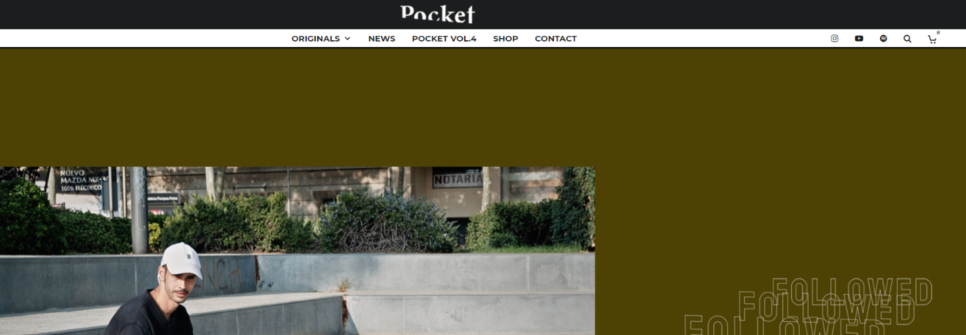 Pocket skateboard magazine and publication