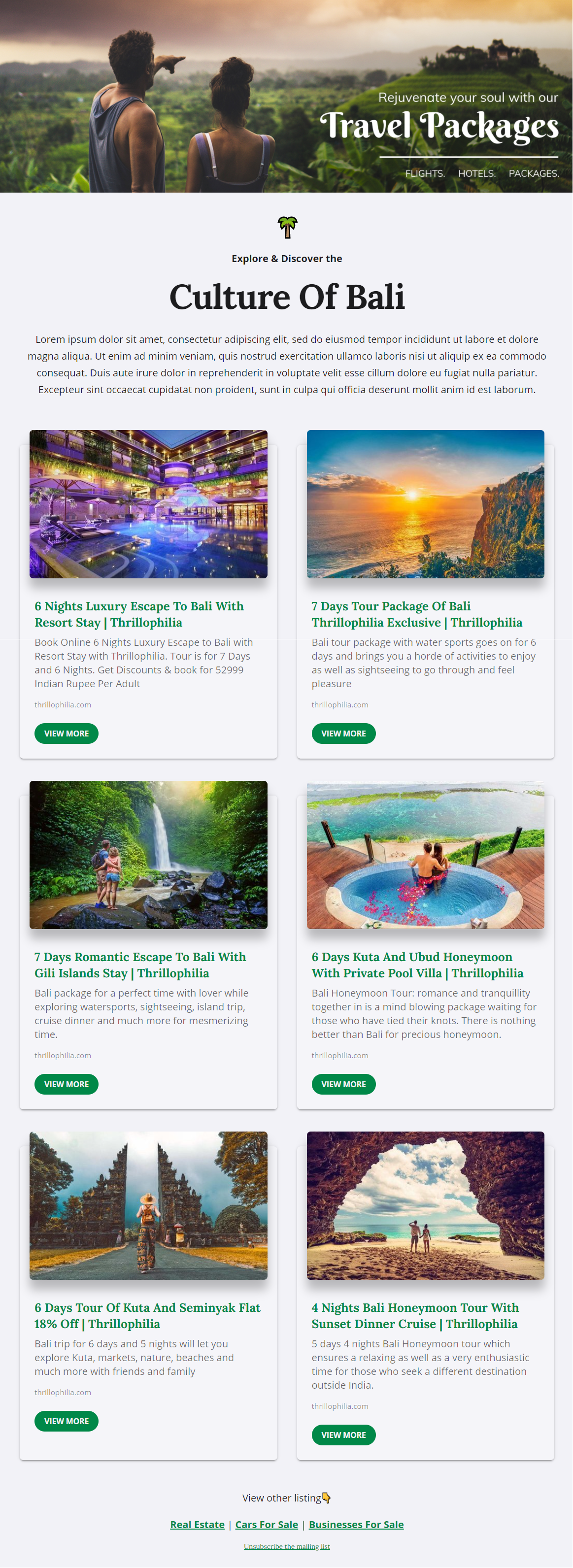 Travel packages newsletter template